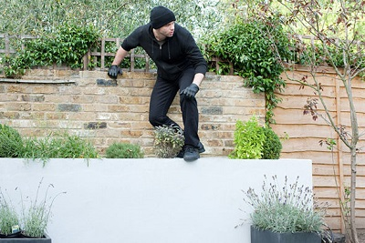 burglar proof your garden