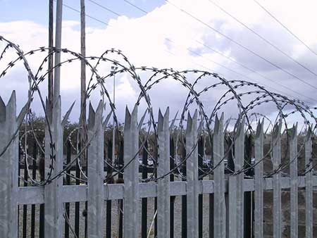 galvanised concertina barbed wire